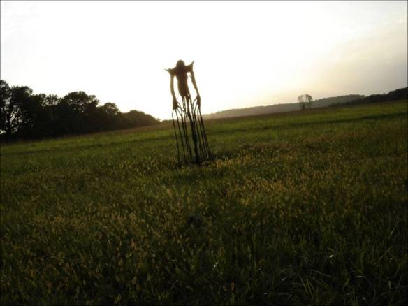 The_Man_in_the_Fields